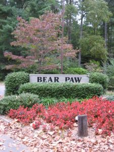 Bear Paw Resort In The Hiwassee Dam Community Of Murphy Nc Murphy Nc Real Estate Search Remax