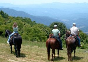 Carters-Mountain-view